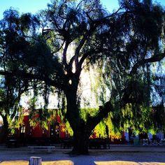 Photo by laylagallo  S.Marcos La Sierra, Argentina