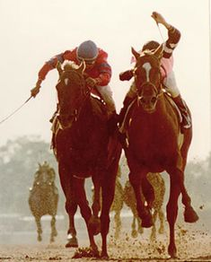 Alydar  Affirmed - The Belmont Stakes  Alydar finished a close second behind Affirmed in all three Triple Crown races, 1978.
