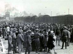 Auschwitz:  Die Aufnahme vom 27. Mai 1944 zeigt neu eingetroffene Häftlinge im...