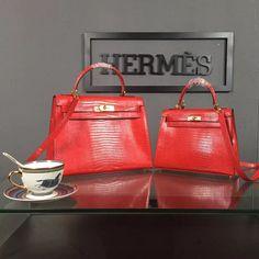 Hermes Kelly Lizard Pattern Calfskin Bag in Red with GHW Hermes Kelly 25, Celine Luggage, Bag Sale, Blue Grey, Dust Bag, Photoshoot, Purses, Random, Pattern