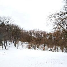 Mecsek.  #hó #tél #mecsek #snow #hiking #hungary #mik #pécs #kisrét Hungary, Hiking, Snow, Outdoor, Instagram, Walks, Outdoors, Outdoor Games, Trekking