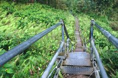 8 Stunning Staircases Built Into Nature | HA'IKU STAIRS, Kaneohe, Hawaii.