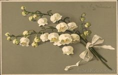 Catherine Klein - Lilies of the Valley Tied up with White Ribbon