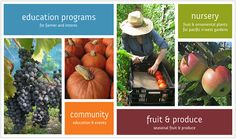 To build experience, knowledge and #community to expand dynamic local #food systems - http://www.naturesfootprint.com/community