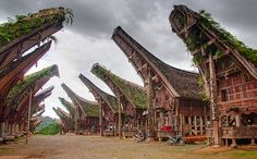Tana Toraja Regency, South Sulawesi, Indonesia