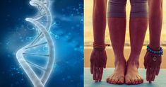 Yoga and Meditation Reverse the DNA Damage That Makes Us Sick and Depressed Mind Nutrition, Science Daily, Getting More Energy, Yoga Philosophy, Mental Health Issues, Body Systems, Dna Test, Pranayama, Yoga Benefits