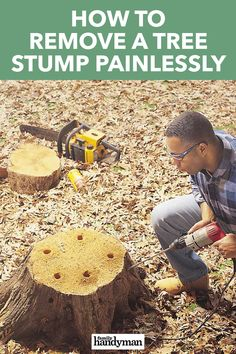 How to Remove a Tree Stump Painlessly Outdoor Projects, Garden Projects, Diy Projects, Outdoor Decor, Outdoor Landscaping, Outdoor Gardens, Mini Gardens, Landscaping Ideas, Stump Removal