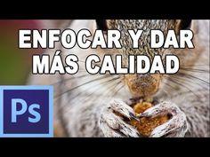Cómo enfocar y dar nitidez a una fotografía - Tutorial Photoshop en Español - YouTube