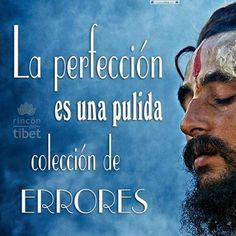 La perfección es una pulida colección de errores