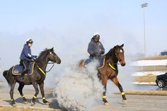 #KCPD #horses #mountedpatrol  Mounted Patrol Officers in training for the St. Patrick's Day Parade