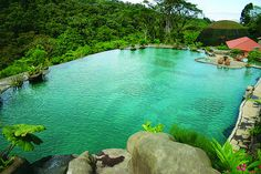 Costa Rica: La Paz Waterfall Gardens & Peace Lodge...first stop on our honeymoon adventure!