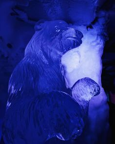 Ice Sculpture Polar Bear Ice Bar Amsterdam Ice Bars, Facebook Party, Ice Sculptures, Coventry, Utrecht, Polar Bear, Pitch, Ethereal, Amsterdam