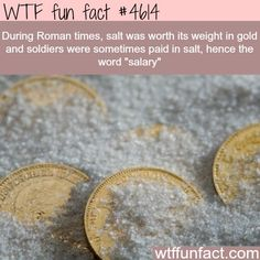 WTF Fun Facts is updated daily with interesting & funny random facts. We post about health, celebs/people, places, animals, history information and much more. New facts all day - every day! Wow Facts, Wtf Fun Facts, True Facts, Funny Facts, Random Facts, Useful Facts, Weird History Facts, False Facts, Random Stuff