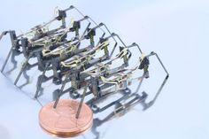 Centipede Millirobot / Katie Hoffman