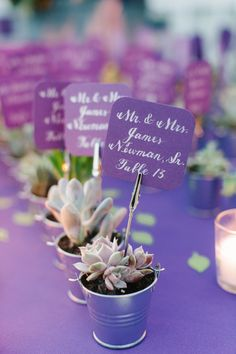 cute succulent wedding place cards and favors (using gift as seating chart/place card Wedding Favors And Gifts, Lilac Wedding, Spring Wedding, Wedding Flowers, Purple Wedding Favors, Wedding Who Pays, Our Wedding, Wedding Ideas, Wedding Venues