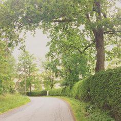 Aina kun lähden kotoa saan nauttia tästä = #lempimaisema #järvenpää #ristinummi #tuusulanjärvi #meidänfestivaali #kotikulmat #hyväjäke