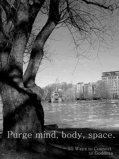 Number 19- Purge mind, body, space. Negativity collects in the unwanted and unclean spaces of your mind, soul, and home. Do your best to release everything that is not serving you anymore. If it is something that may be useful to others, do your best to find a charity or needy person to pass it along to. - 55 Ways to Connect to Goddess, now available on Amazon