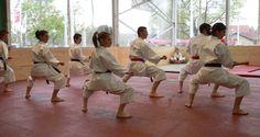 Karate-Demonstration an der BEA im Jugend+Sport-Zelt. Goju Ryu, Bern, Karate, Sports, Outdoor Camping, Hs Sports, Sport
