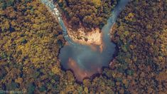 Devostock Outdoor Nature Aerial Photography Aerial Shot Bird S Eye View Pictures To Draw, Drawing Pictures, Birds And The Bees, Bird Drawings, Birds Eye View, Colorful Birds, Aerial Photography, Free Stock Photos, Bird Feeders