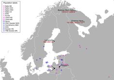 Populations from North-eastern Europe, in particular those speaking Uralic languages, carry additional ancestry in similarity with modern East Asian populations. Here, the authors analyse ancient genomic data from 11 individuals from Finland and Northwest Russia, and identify genomic signals of migrations from Siberia that began at least 3500 years ago.