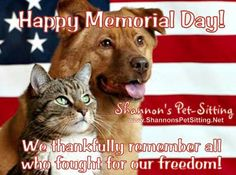 memorial day pet photos