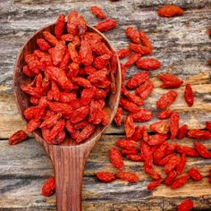 Shop for Goji Seeds by the Packet or Pound.Com offers Hundreds of Seed Varieties, Including the Finest and Freshest Culinary Herb Seeds Anywhere. Eating Raw, Healthy Eating, Natur House, Fitness Motivation, Goji, Berry Plants, Fruit Seeds, Herb Seeds, Organic Seeds