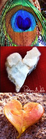 """Happy Valentine's Day! ♥ """"Hearts Found in Nature"""" photography by Robyn Nola."""