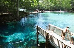 Fanning Springs State Park, FL
