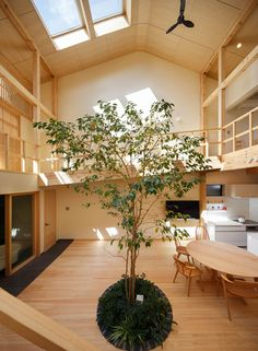 Completed in 2019 in Kyoto, Japan. Images by Yosuke Ohtake. The house is for a couple and their three little children, located in a quiet residential area in northern Kyoto city. Japanese Architecture, Small Staircase, Indoor Trees, Japanese House, Interior, Timber House, Family House, Wood Architecture, Interior Architecture