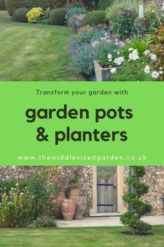 How to use pots to add colour to your patio, fill gaps in flower borders, frame front porches or grow special plants. #gardening #backyard #middlesizedgarden #containergarden Low Maintenance Garden Design, Low Maintenance Plants, Garden Trees, Garden Planters, Container Plants, Container Gardening, Flower Borders, Yellow Plants, Garden Privacy