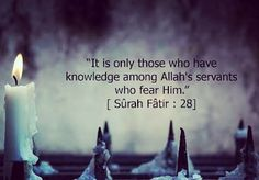 Only the knowledgeable servants of Allah fear Him...Others fear everything else…
