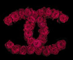 Chanel in roses