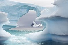 Very old, blue, carved iceberg Cuverville Island - Antarctic Peninsula via Igor Mamantov Beautiful World, Beautiful Places, Amazing Places, Sea To Shining Sea, India Travel, Cool Photos, Amazing Photos, Winter Snow, The Good Place