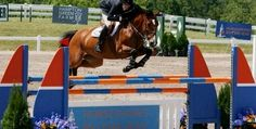 July 2-6; 9-13; 16-20; 23-27, 2014: Four consecutive weeks of premier hunter/jumper competition held annually in Traverse City,