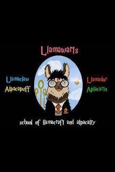 Forget Hogwarts and Pigfarts, I want to go to Llamawarts!