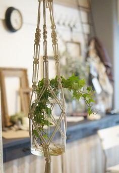 鉢や瓶をマクラメで結んだら、ゆらゆら楽しいグリーンハンギングの出来上がり。