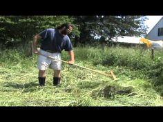 Advantages to Scything and Haying by Hand (from a nonprofessional's point of view). Quite interesting!
