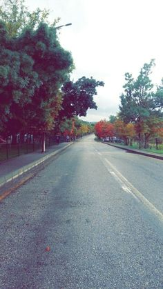 Fall at Middle East Technical University