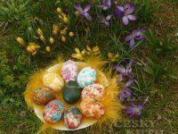 Velikonoční barvení ještě trochu jinak Eggs, Food, Essen, Egg, Meals, Yemek, Egg As Food, Eten