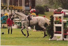 Le géant gris, Calvaro 005 a chuté dans la rivière pendant la coupe des nations à Aix La Chapelle en 1997. Willi Melliger © D. Caremans.