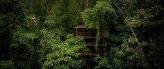 Finca Bellavista Sustainable Treehouse Community