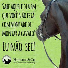 Memes com cavalos e situações hípicas - Hipismo & Co