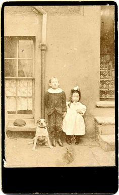 all scared by Libby Hall Dog Photo, via Flickr