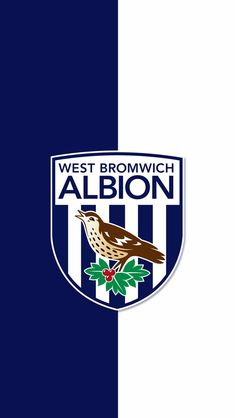 Football Stadiums, Football Players, West Brom Wallpaper, Plain Black Background, West Bromwich, Football Wallpaper, Cool Walls, Designer Wallpaper, Porsche Logo
