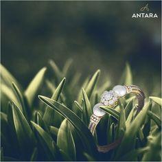 Antara, Gold Jewelry, Jewelry Design, Wedding Rings, Engagement Rings, Jewels, Diamond, Enagement Rings, Jewerly