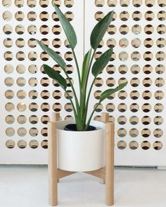 10 Best planters to buy online
