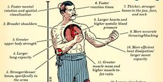 How Men Are Evolved For Fighting According to Science Strong Bones, Art Of Manliness, Army Mom, Broad Shoulders, Bettering Myself, Health And Safety, Upper Body, Martial Arts, Work Hard