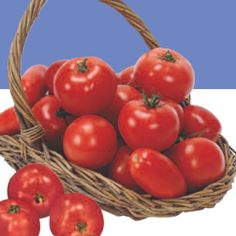 Growing Tomatoes Growing Tomatoes - how to grow Tomatoes in garden - in Texas - Tomatoes are the most popular garden vegetable crop in Texas. They are a good source of vitamin A and fair source of vitamin C. Growing Vegetables In Pots, Growing Tomatoes In Containers, Container Vegetables, Planting Vegetables, Healthy Vegetables, Growing Herbs, Grow Tomatoes, Veggies, Texas Gardening