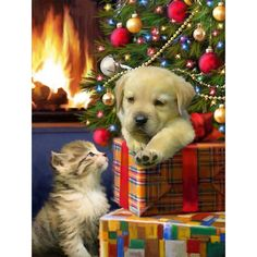 5D Diamond Painting Christmas Tree Presents Dog and Cat Paint with Diamonds Art Crystal Craft Decor