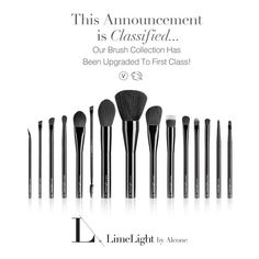 New Black Handled Vegan Brushes with a Leather high quality black brush holder. These brushes have been made of finer hairs to work best with Limelight By Alcones' more pigment makeup and is much softer on the face. High quality professional brushes a Best Brushes, Best Makeup Brushes, Best Makeup Products, Cleanser For Oily Skin, Facial Cleanser, Paraben Free Makeup, Lime Light By Alcone, Basic Makeup, Makeup Basics